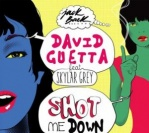 David Guetta feat. Skylar Grey – She Shot Me Down (Extended Mix)