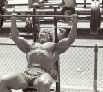Dumbell VS. Barbell Bench